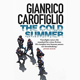 The Cold Summer audiobook cover art