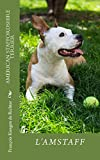 American Staffordshire Terrier: Amstaff (Les petis guides t. 1)