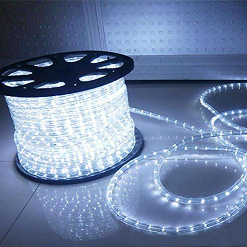 100 Feet 720 LED Rope Lights,2-Wire Low Voltage Waterproof Rope Lights Outdoor ,Indoor Background Lighting Idear for Trees,Bridges,Eaves,Pool,Wedding Use(White)