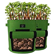 Laxllent Vegetable Growing Soft sided Pots Grow