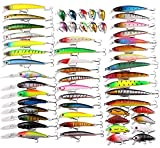 Mounchain 56pcs Hard Fishing Lure Set Assorted Bass Soft Fishing Lure Kit Colorful Minnow Popper Crank Rattlin VIB Jointed Fishing Lure Set Hard Crankbait Tackle Pack Saltwater Freshwater