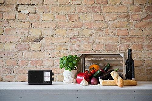 Sony ICF-506 Tragbares robustes Analogradio (Retrodesign, voller Klang, AC-Netzteil oder Batteriebetrieb, Tragegriff) Schwarz