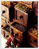 1art1 Gewürze Poster Kunstdruck und Kunststoff-Rahmen -