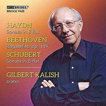 Haydn, Beethoven & Schubert: Piano Works