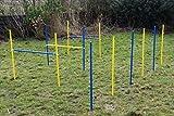 Ostacoli agility dog/set aste per slalom colore blu/giallo...