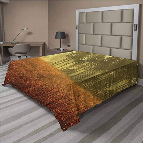 LCGGDB Mystic Flat Top Sheet,Misty Forest Autumn Season Soft Comfortable Top Sheet Decorative Bedding 1 Piece,Twin Size,Fit for Oversize and Extra Height Twin Bed