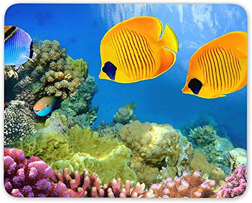 Mauspad, tropisches Riff Mausmattenpad - Aquarium Aquarium Office Fun Computer Geschenk