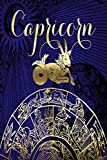 2021 Daily Planner Capricorn Symbol Astrology Zodiac Sign Horoscope 388 Pages: 2021 Planners Calendars Organizers Datebooks Appointment Books Agendas