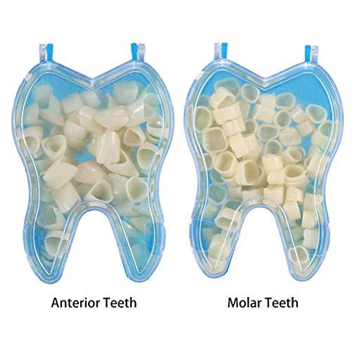 Provisorischer Zahnprothese Veneer,Kunststoff Thermal Passende Perle,zahnersatz Veneers,die Dir Den Blick Der Perfekten Zähne Geben,Posterior Teeth
