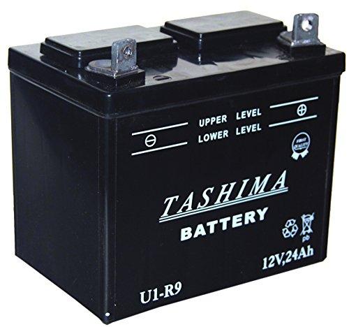 Greenstar 15377 Batterie u1.r9 (f506), Noir