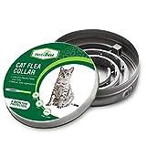 Best Flea Collars For Cats - HerbalVet Cat Flea Collar for Flea and Tick Review