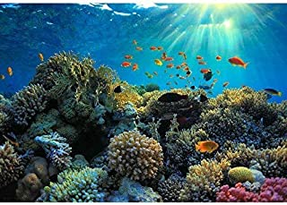 wall26 - Beautiful View of Sea Life - Removable Wall Mural | Self-adhesive Large Wallpaper - 100x144 inches