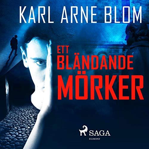 Ett bländande mörker audiobook cover art
