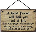 Egbert's Treasures 5x8 Vintage Style Sign Saying A Good Friend Will Bail You Out of Jail. But Your Best Friend Will be Sitting Next to You Saying, Damn. That was Fun! Fun Household Signs from
