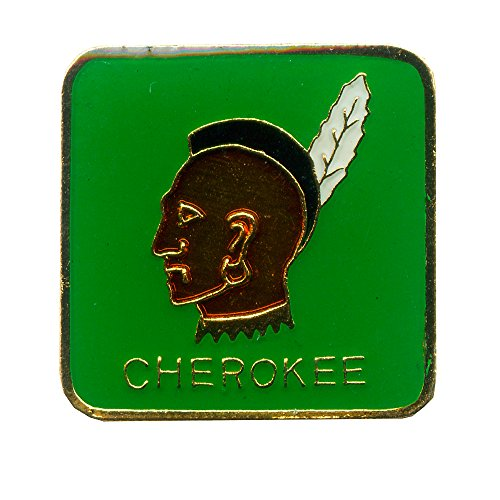 Cherokee Krieger Indianer Indian USA Badge Metall Button Pin Anstecker 0361