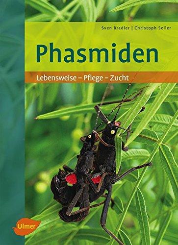 Phasmiden: Lebensweise, Pflege, Zucht