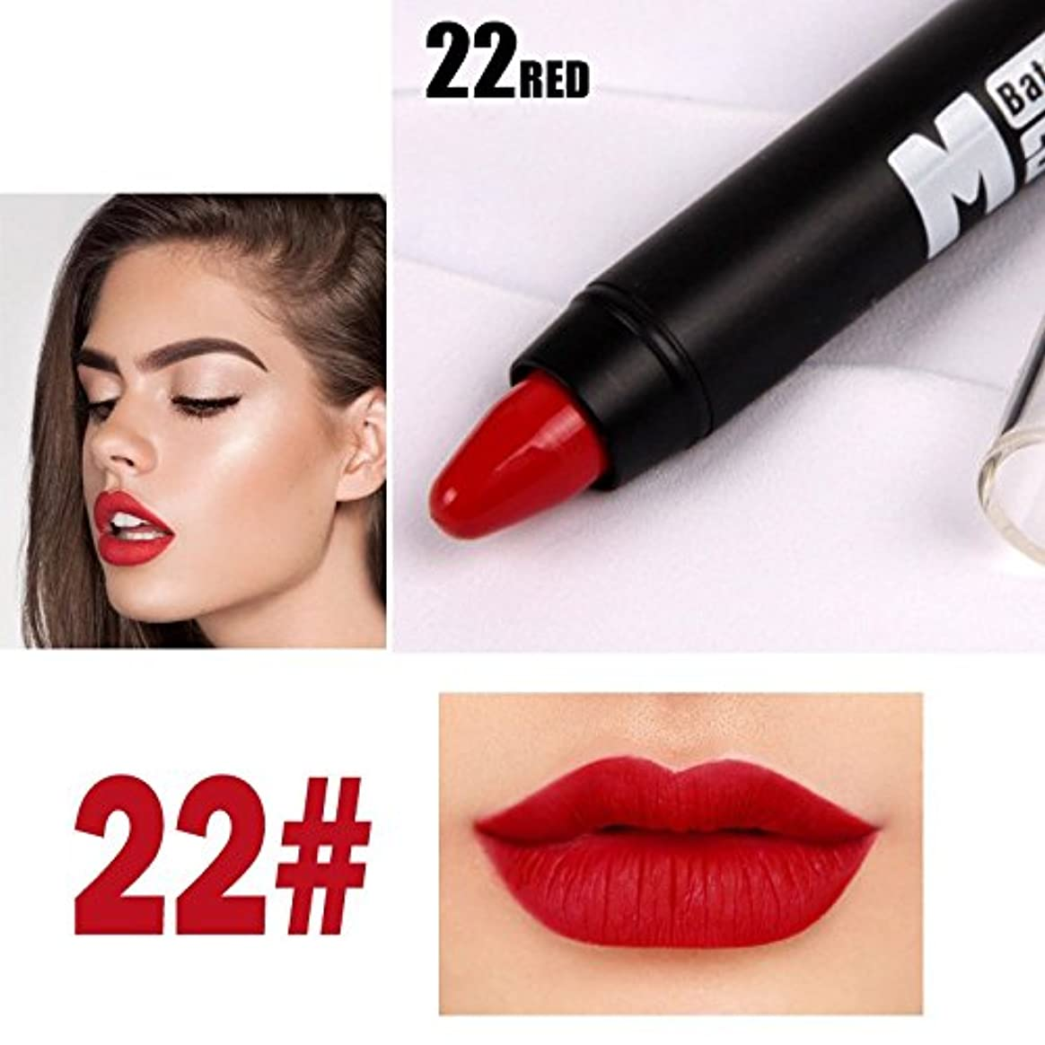 算術ロバスラッシュMISS ROSE Professional Women Waterproof Lipstick Lips Cream Beauty Lote Batom Matte Lipstick Nude Pencils Makeup
