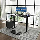 FLEXISPOT E1 Height Adjustable Electric Standing Desk with Desktop Two-Stage Heavy Duty Steel Stand up Desk (Black Frame+ Black Desktop)