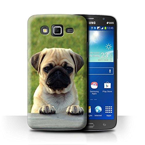 eSwish Carcasa/Funda Dura para el Samsung Galaxy Grand 2/G7102 / Serie: Razas Perro/Canino Populares - Adorable Pug/Doguillo