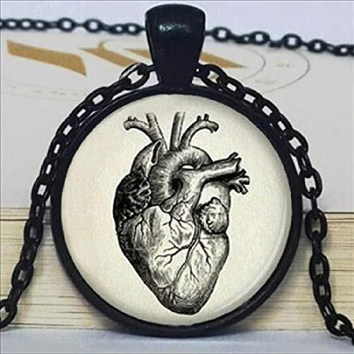 ALJKJ Halloween Anatomie Herz Halskette Anhänger Halskette Schmuck Herren Halskette, 1