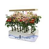 Creativem Kit de Sistema de Cultivo hidropónico, plantador hidropónico Inteligente con lámpara LED Ajustable Mini jardín de Hierbas jardín Inteligente para la Planta Que Crece para la jardinería
