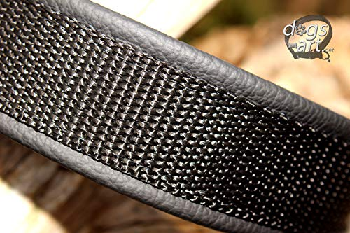 Hundehalsband Leder Klassisch Schwarz Klickverschluss Alu Schwarz Silber Halsband mit Gravur