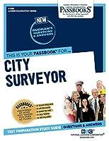 City Surveyor (Career Examination)