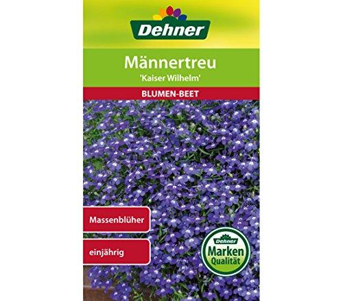 Dehner Blumen-Saatgut, Männertreu
