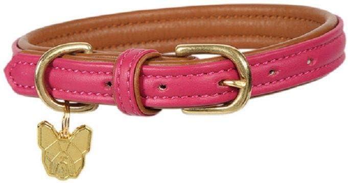 オープニング 大放出セール Shires Digby Fox Padded Collar 安値 Leather Dog