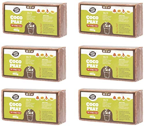 Coco&Coir® 6 x 650g (9L) Kokoserde | Kokosblumenerde| Kokospflanzerde | Kokos-Kompost | Blumenerde aus Kokosfaser | Kokostorf | Kokoseinstreu Bodengrund für Reptilien | 100{2c5d54bf163b8f997dbe65c25429899a0fd25b4a8666def0f27256562c604f97} natürlich | Kokoshumus