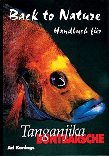 Tanganjika Buntbarsche