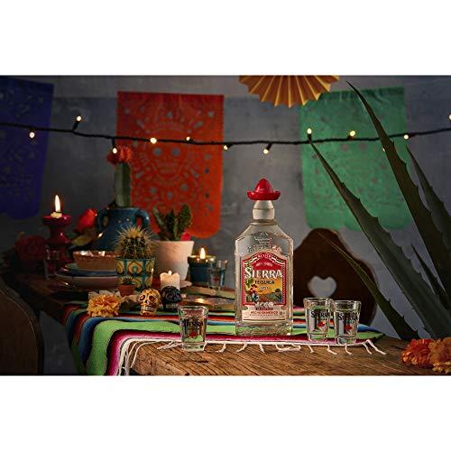 Sierra Silver Tequila - 4