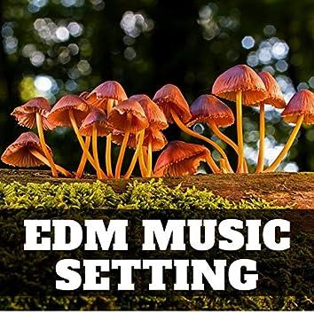 Edm Music Setting