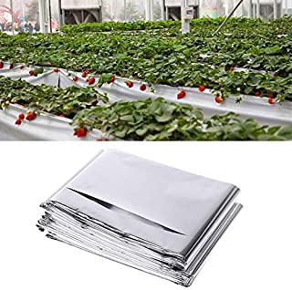 Agricultural Greenhouses - Garden Silver Reflective Plant Portable Lightweight Flim Greenhouse Grow Light Yh Ktsf - Mastergrow P Seed An10 Greenhouse Indian Garden Full Cadillac LegB
