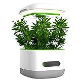 ZDYLM-Y Smart Garden, hidroponía Creciente del Sistema con función de Temporizador, iluminación LED, Sistema de simulación de Verano, Blanca