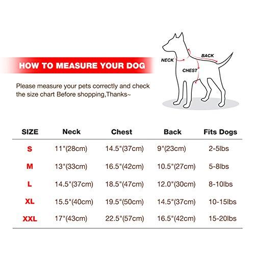 Namsan Pet Puppy Dog wasserfeste Kleidung und Winddichte Kapuzen Winter warme Kleidung Mantel Outwear -Pink -Kleine - 7