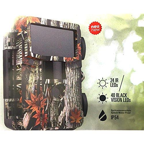 Dörr Wild Caméra de surveillance Snapshot Mini Black 12 MP HD + 2 x Carte SD + piles
