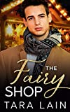 The Fairy Shop: A Single Dad, Small Town, Magical Shop, MM Romance (English Edition)