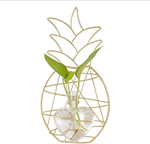 AHNNER Wall Water Flower Vase  Nordic Wrought Iron Cactus Glass Hydroponic Vase Wall Hanging Home Living Room Bedroom Wall Decoration  Types A