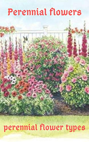 Perennials flowers perennial flower types: flower arranging