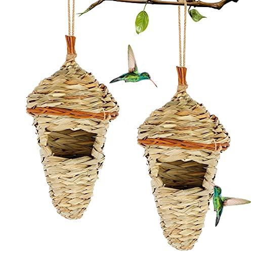 Hanging Hummingbird Nest House