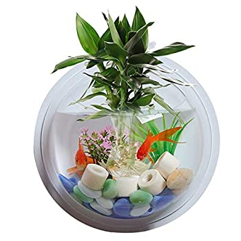 ACJLHY Wall-Mounted Fish Tank Transparent Acrylic Hanging Aquarium Hanging Fish Tank Hanging Fish Tank Wall Hanging Fish Bowl for Wall Decoration