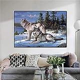 Bajo el Cielo Estrellado de la Noche, el Lobo Blanco contempla Las lejanas Pinturas en Lienzo y Carteles para la decoración del hogar 60x85cm sin Marco