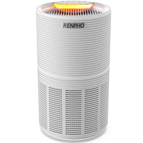 Best Air Purifiers for Child With Allergies