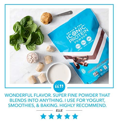 Iconic Protein Powder, Chocolate Truffle, 1 Lb (17 Serving) | Sugar Free, Low Carb Protein Shake | 20g Grass Fed Whey Protein & Casein | Lactose Free, Gluten Free, Kosher, Non-GMO | Keto Friendly 1