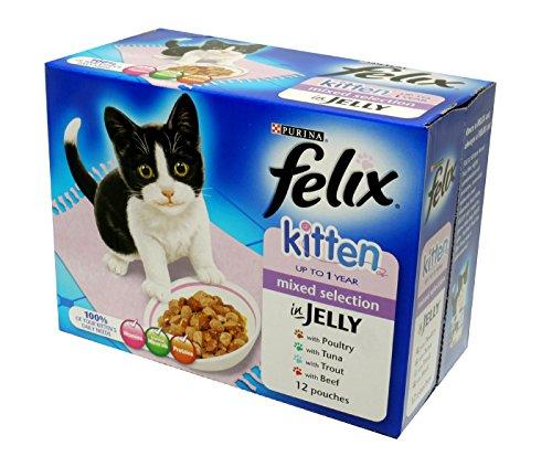 Felix Kitten Poultry, Tuna, Beef & Trout 12x100g