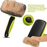 Zoom IMG-2 pecute spazzola autopulente per cani