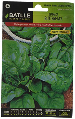 Batlle Gemüsesamen - Spinat Butterflay (1700 Samen)