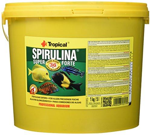 Tropical Super Spirulina Forte Flockenfutter mit 36% Spirulina (Platensis) Anteil, 1er Pack (1 x 5 l)