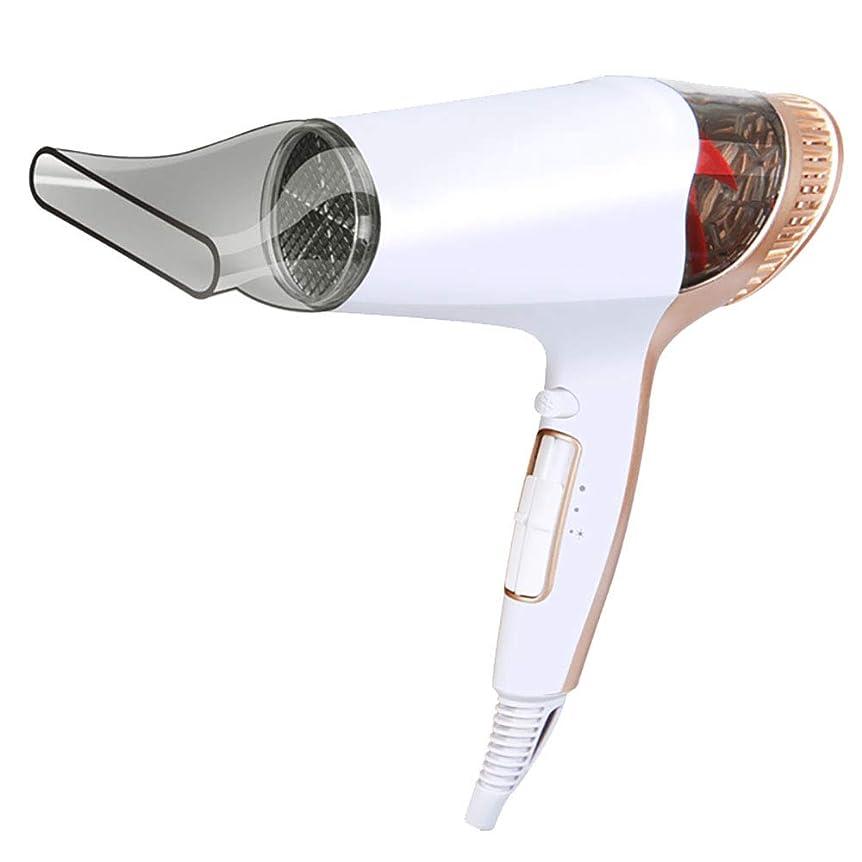 競争外交問題めまいがヘアドライヤーホームハイパワーヘアーサロンバーベーショップホットと冷たい風陰イオンミュートヘアドライヤーチューブ白